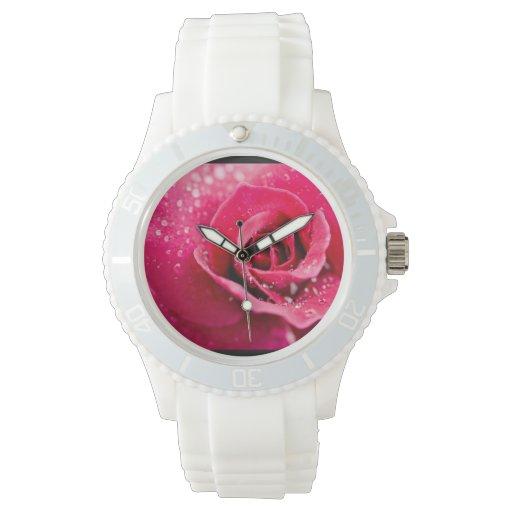 Descensos de rocío en un color de rosa relojes
