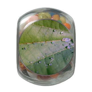 Descensos de rocío jarrones cristal