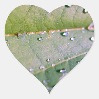 Descensos de rocío pegatina de corazon