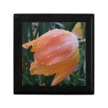 Descensos del agua en el tulipán de color salmón cajas de recuerdo