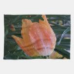 Descensos del agua en el tulipán de color salmón toalla de mano