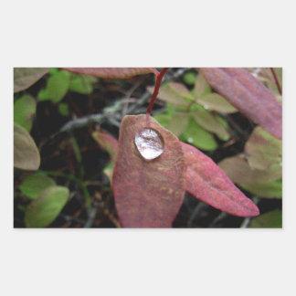 Descensos del agua en follaje pegatina rectangular