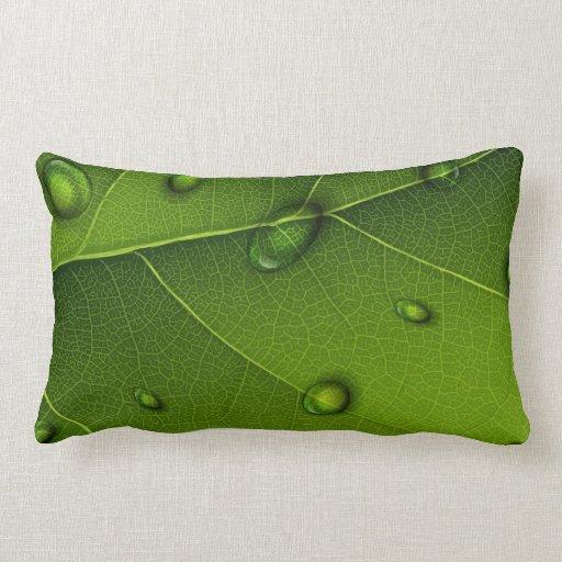 Descensos del agua en la almohada verde de la hoja