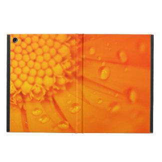 Descensos del agua en la flor anaranjada