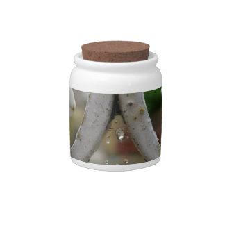 Descensos del agua en una tela de araña jarra para caramelo