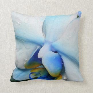 Descensos en la orquídea azul - almohada de MoJo