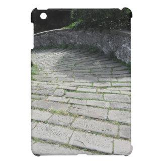 Descent stone walkway of medieval bridge iPad mini cover