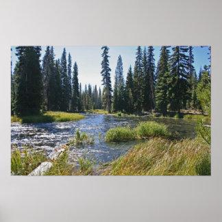 Deschutes River at Little Lava Lake, Oregon Poster