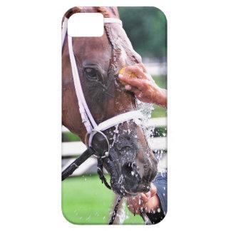 Descolórese para ennegrecerse iPhone 5 carcasas