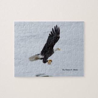 Desconcierte Eagle calvo que entra coger un pescad Puzzle Con Fotos