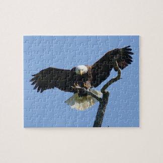 Desconcierte, Eagle comeing adentro para un aterri Puzzles Con Fotos