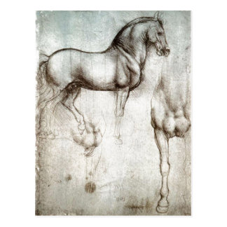 Description Study of horse original image held by  Postcard