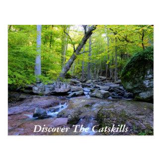Descubra el Catskills 5 Postal