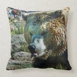 Descubra la almohada del oso