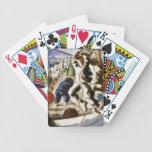 Descubrimiento de la tierra baraja cartas de poker