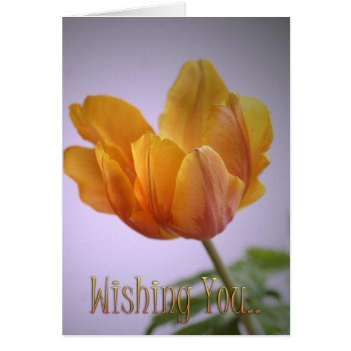 Deseándole el texto y la tarjeta del tulipán