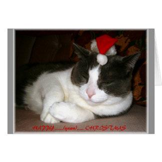 Deseo del navidad de un gato tarjeta de felicitación
