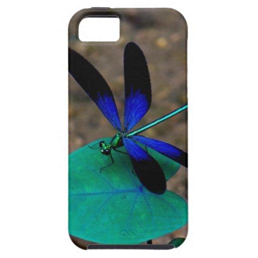 Deseo sobre un caso del iPhone 5 de la libélula iPhone 5 Fundas