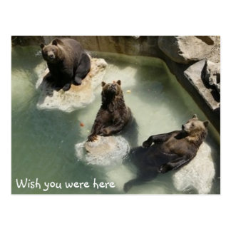 Deseo usted estaba aquí tarjeta postal