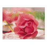 Deseos bendecidos y maravillosos extraordinarios d tarjetas postales