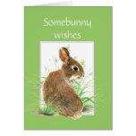 Deseos del cumpleaños de Somebunny, conejo lindo,  Tarjetas