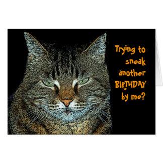 Deseos del cumpleaños del gato felicitacion