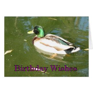 Deseos del cumpleaños del pato del pato silvestre tarjeta de felicitación