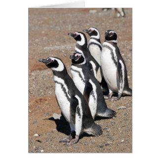 Deseos del feliz cumpleaños del pingüino tarjeta pequeña