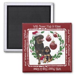 Deseos del navidad de Rottweiler Imán Cuadrado