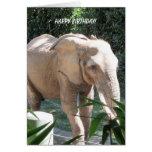 Deseos dulces del cumpleaños del elefante