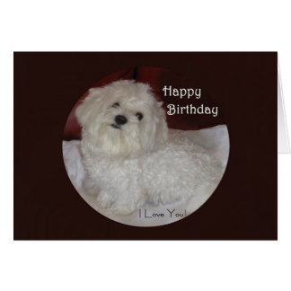 Deseos malteses del cumpleaños del amor tarjeta de felicitación
