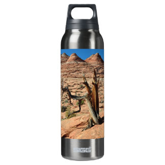 desert 16 oz insulated SIGG thermos water bottle