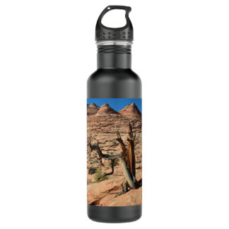 desert 24oz water bottle