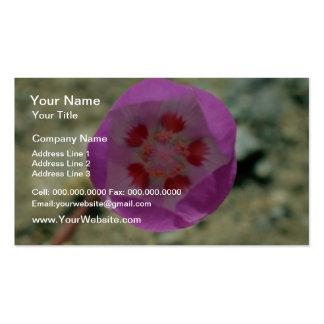 Desert 5-spot flowers Double-Sided standard business cards (Pack of 100)