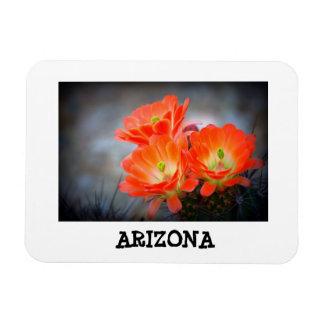 Desert ablaze Arizona Magnet