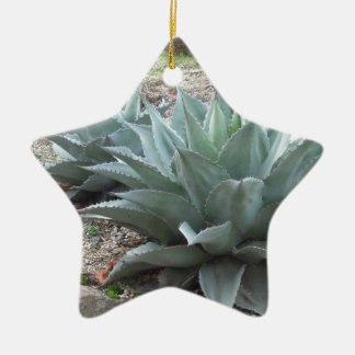 Desert Agave Plants Ceramic Ornament