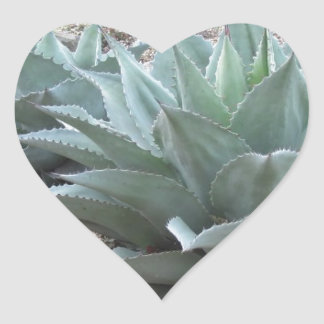 Desert Agave Plants Heart Sticker