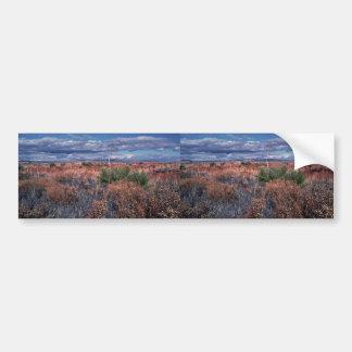 Desert Beauty Car Bumper Sticker