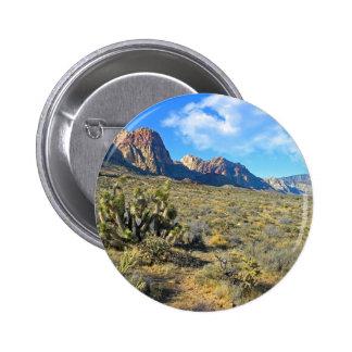Desert Beauty Pins