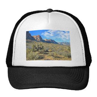 Desert Beauty Trucker Hat