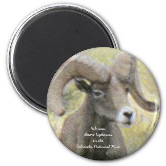 Desert Bighorn Sheep Magnet