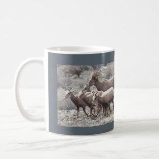 Desert Bighorn Sheep Photo Mug
