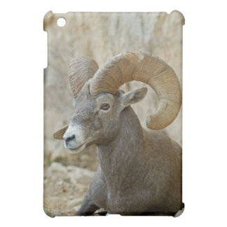 Desert Bighorn Sheep Ram Resting Grand Canyon NP Cover For The iPad Mini