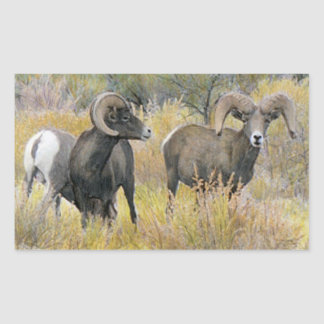 Desert Bighorn Sheep Stickers