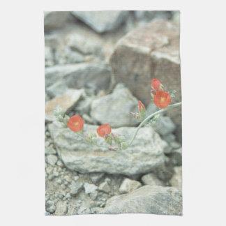 Desert Blossoms Southwest Cotton Kitchen Towels