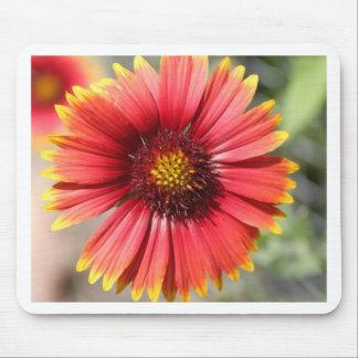 Desert Botanical Garden Flower Mouse Pad