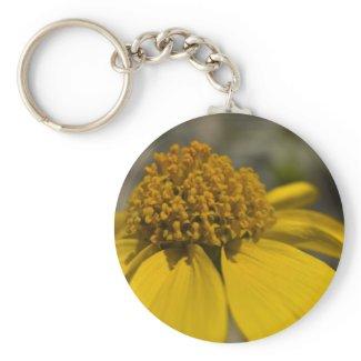 Desert Brittlebrush Keychain zazzle_keychain