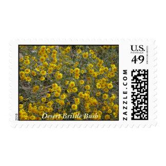 Desert Brittlebush Postage Stamps