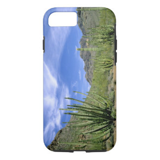Desert cactus at Organ Pipe National Monument, iPhone 8/7 Case