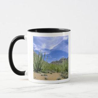 Desert cactus at Organ Pipe National Monument, Mug